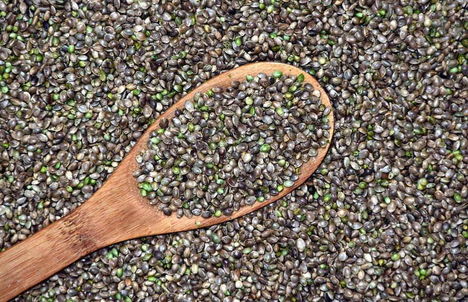 Buy Feminised Cannabis Seeds Australia